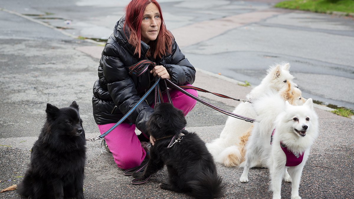 Jessica Engberg med sina fyra hundar.