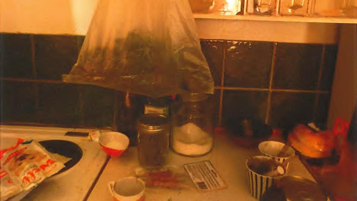 Cannabis på köksbänken
