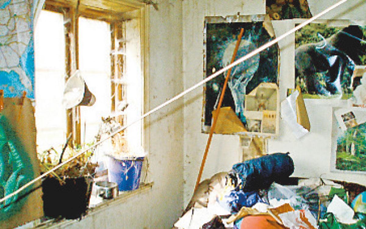 Växthus? Växtligheten har trängt igenom golvet i badrummet i en av bostäderna på Tunisborg. Bild från 2008.