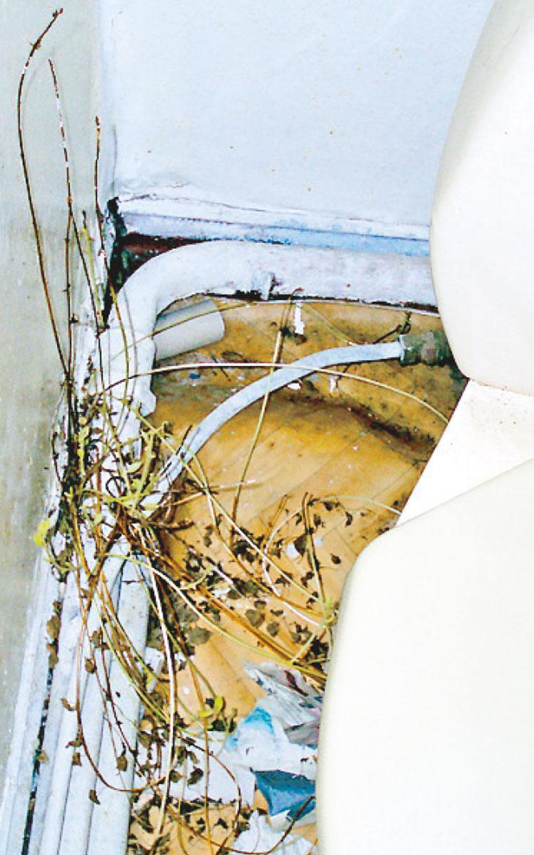 Undermåligt boende. Ägaren Bertil Andersson hyrde ut Tunisborg som bostad. Enligt Hyresgästföreningens Mats Lindahl var hyresgästerna personer som inte kunde hitta boende på annat sätt. Bild från 2008.